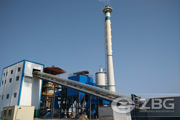 20 Ton Biomass Power Plant Boiler в Китае